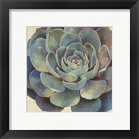 Framed Succulence I - Mini
