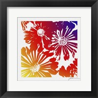 Framed Floral Brights II
