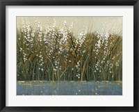 By the Tall Grass I Framed Print