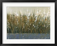 By the Tall Grass II Framed Print