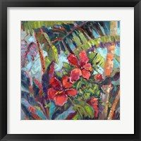Splash of the Tropics II Framed Print