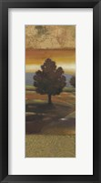 Sunset Creek I Framed Print