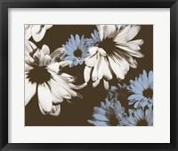 Chocolate Bloom I Framed Print