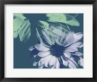 Framed Teal Bloom I