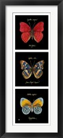 Primary Butterfly Panel I Framed Print