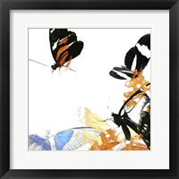 Butterfly Inflorescence IV Framed Print