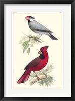 Framed Lemaire Birds I