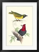 Framed Lemaire Birds II