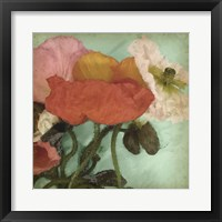 Aquatic Poppies II Framed Print