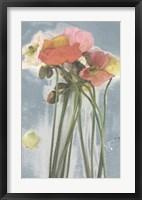 Poppy Spray I Framed Print