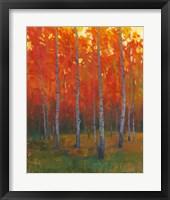 Changing Colors II Framed Print