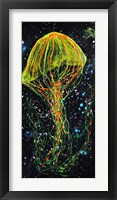 Framed Atlantic Sea Nettle