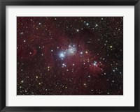 Framed NGC 2264 region showing the Cone Nebula, Christmas Tree Cluster, and Fox Fur Nebula