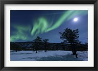 Framed Aurora Borealis, Forramarka, Troms, Norway