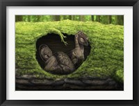 Framed pair of juvenile troodons in the hollow of a tree
