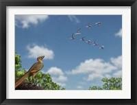 Framed Archaeopteryx observing a flock of migrating pterosaurs