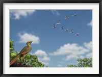 Framed Archaeopteryx observing a flock of migrating pterosaurs