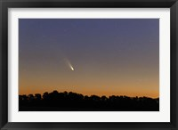 Framed Comet Panstarrs at twilight,  Buenos Aires, Argentina