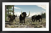 Framed Woolly Mammoths in the prehistoric northern hemisphere