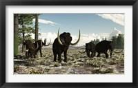 Framed Woolly Mammoths in the prehistoric northern hemisphere