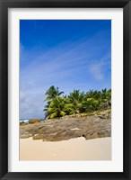 Framed Anse Bambous Beach on Fregate Island, Seychelles