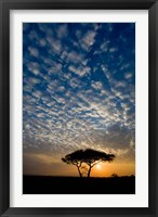 Framed Africa. Tanzania. Sunrise in Serengeti NP.