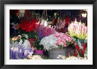 Framed Bunch of Flowers at the Market, Madagascar