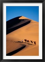 Framed Camel Caravan with Sand Dune, Silk Road, China