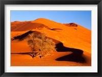 Framed Elim Dune Overcomes, Sesriem, Namib Naukluft Park, Namibia