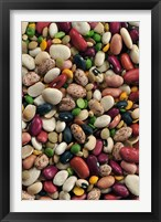 Framed Colorful dried bean soup mixture, cuisine