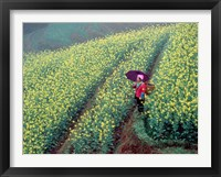 Framed Chinese Woman Walking in Field of Rapeseed near Ping' an Village, Li River, China