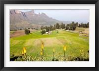 Framed Amiwalka, Semien Mountains National Park, Ethiopia