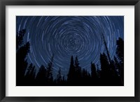 Framed Star trails and a meteor above pine trees in Lassen Volcanic National Park