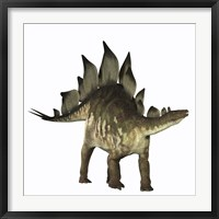 Framed Stegosaurus dinosaur
