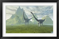 Framed Diplodocus dinosaurs walk together in the afternoon in the prehistoric age