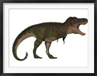 Framed Tyranosaurus Rex, a carnivore of the Cretaceous Period