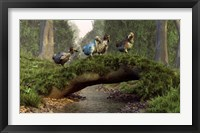 Framed group of Dodo birds crossing a natural bridge over a stream