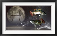 Framed Pisces is the twelfth astrological sign of the Zodiac