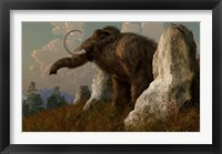 Framed mammoth standing among stones on a hillside