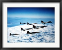 Framed Four F-14 Tomcats and three F-5 Tiger IIs in flight