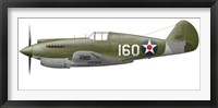 Framed Illustration of a Curtis P-40 Warhawk
