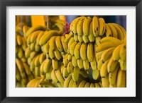 Framed MOROCCO, Atlantic Coast, TAMRI, Market bananas