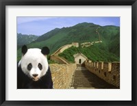Framed Panda at the Great Wall of China