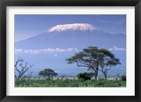 Framed Mount Kilimanjaro, Amboseli National Park, Kenya