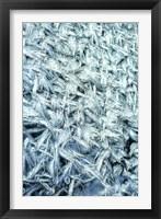 Framed Pattern of Winter Frost on Glass