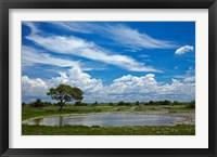 Framed Okaukuejo waterhole, Etosha National Park, Namibia