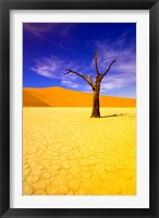 Framed Skeleton Trees in Dead Vlei, Namibia