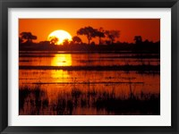 Framed Setting Sun over Lush Banks, Chobe National Park, Botswana