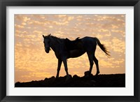 Framed Sunrise and Silhouette of Horse and rider on the Giza Plateau, Cairo, Egypt