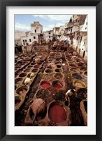 Framed Tannery Vats in the Medina, Fes, Morocco